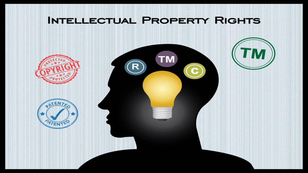 INTELLECTUAL PROPERTY RIGHTS; A CLASS OF PROPERTY RIGHTS